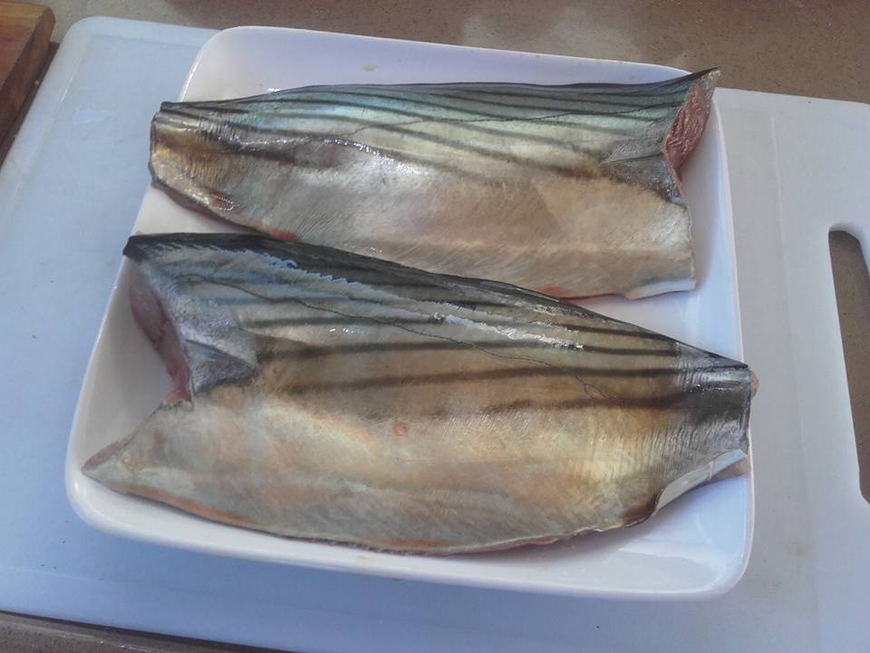 The freshest tuna steaks one could wish for